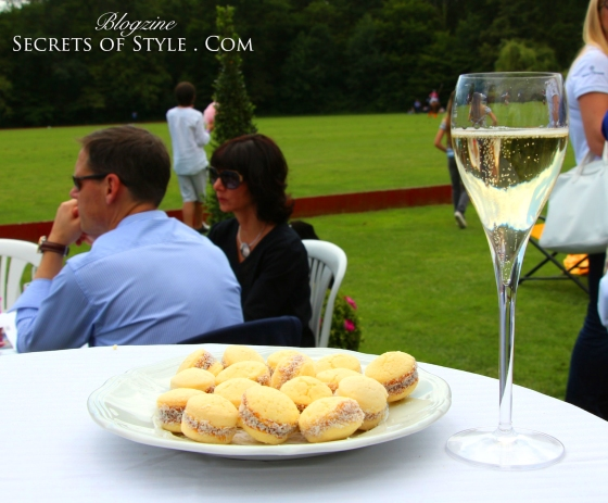 Polo-Piaget-Garden-Party-Florence-Jacquinot-Secrets-of-Style-Veytay-48